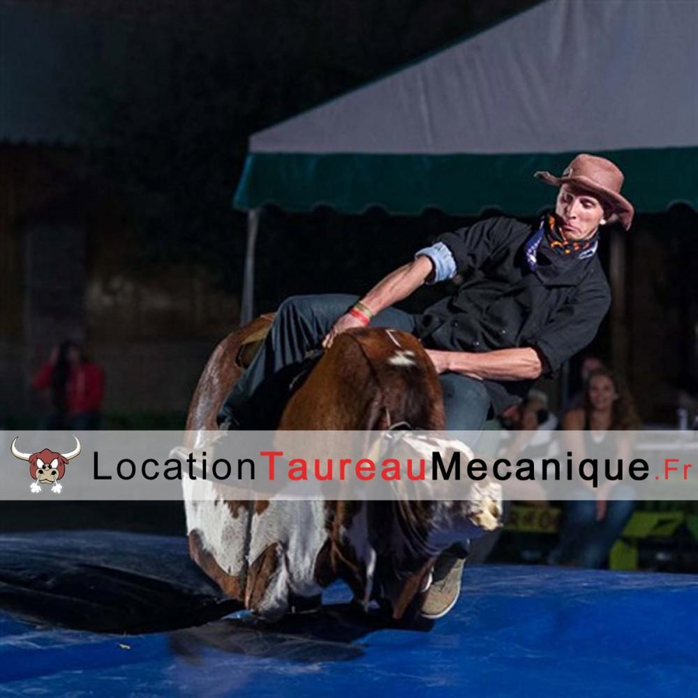 location-taureau-mecanique-paca
